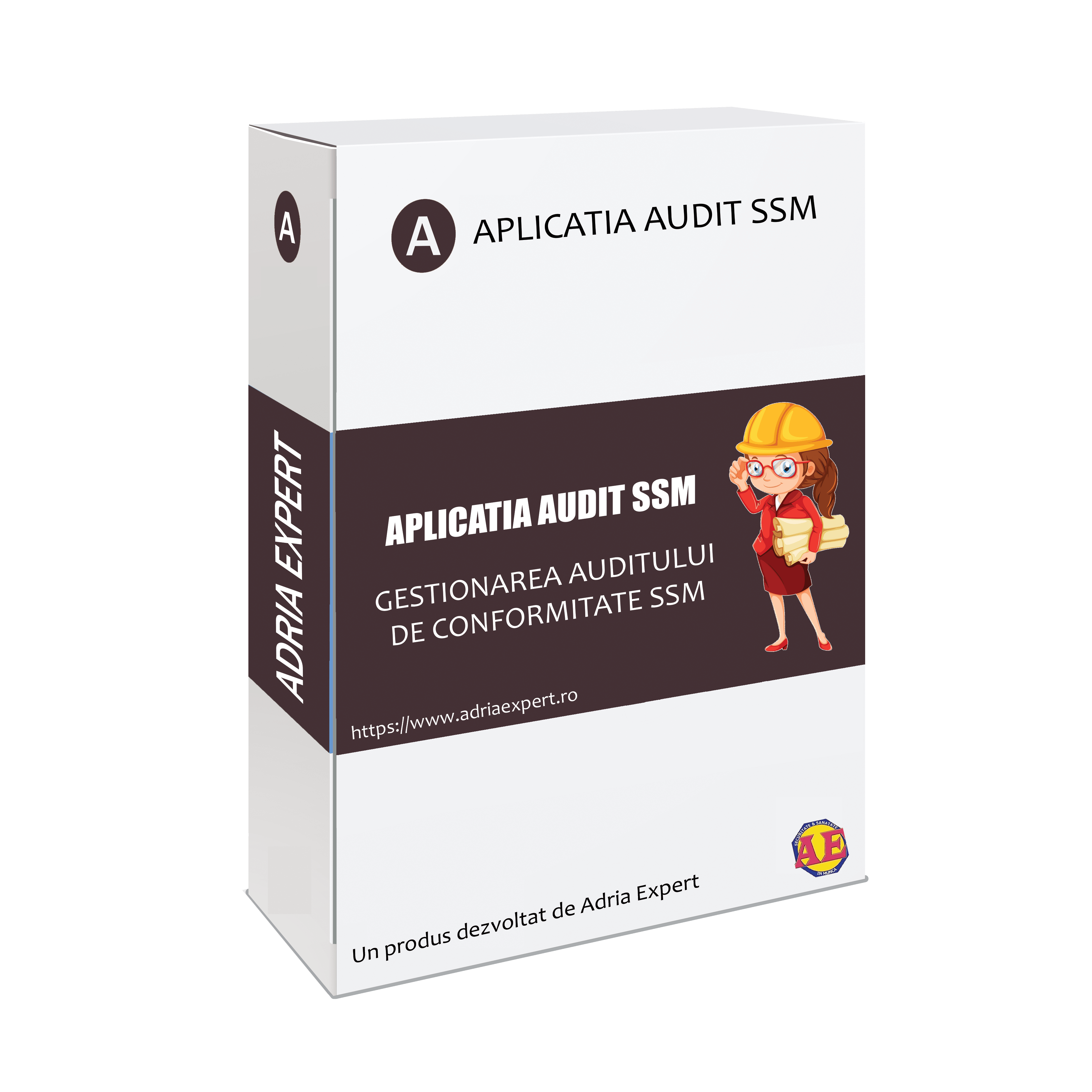aplicatia ssm audit ssm